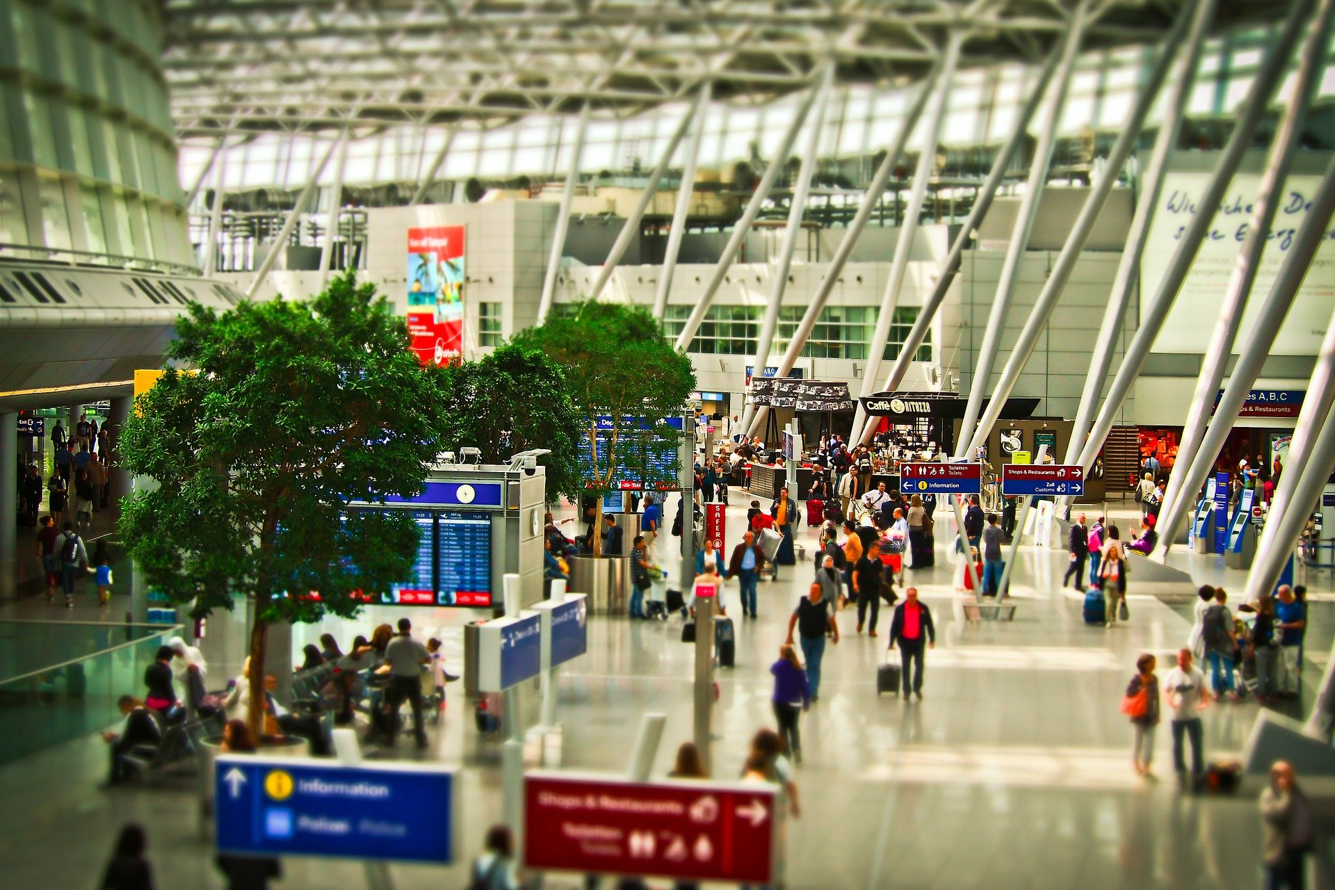 aeropuerto, gente, maletas